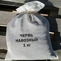 ЧЕРВЬ НАВОЗНЫЙ в мешке 1 кг червя